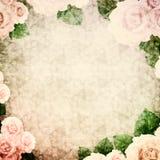 葡萄酒与玫瑰的背景小插图 免版税库存照片