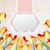 葡萄酒与花的郁金香明信片。EPS 10 库存照片