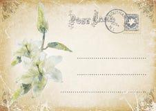 葡萄酒与花的难看的东西明信片 例证 库存照片