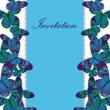 葡萄酒与蓝色蝴蝶的邀请卡片 库存图片