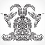 葡萄酒与蜂鸟和装饰书法元素的艺术设计 维多利亚女王时代的主题 免版税库存照片