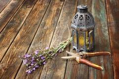 葡萄酒东方灯、贤哲植物和庭院剪刀在木桌。静物画概念。艺术。 免版税库存图片