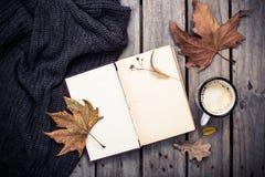 葡萄酒书、被编织的毛线衣有秋叶的和咖啡杯 库存照片