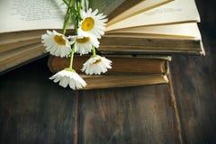 葡萄酒书和春黄菊在木背景 库存图片