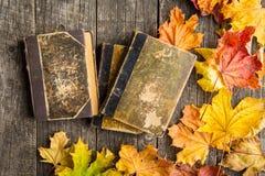 葡萄酒书和秋叶 免版税库存图片