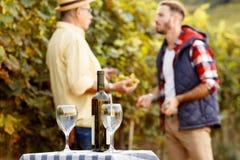葡萄酒产品  免版税库存照片