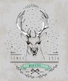 葡萄酒亲爱的商标 T恤杉的设计 免版税库存图片