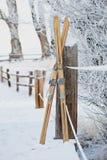 葡萄酒冬天滑雪 库存照片