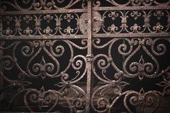葡萄酒华丽威尼斯式门 免版税图库摄影