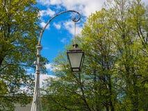 葡萄酒反对开花的树和天空蔚蓝背景的街灯  库存照片