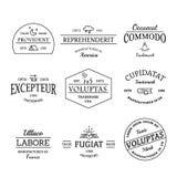 葡萄酒和减速火箭的样式商标和标号组 向量例证