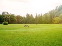 葡萄酒在有桌长凳的自然公园过滤了 库存图片