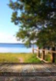 葡萄酒在梦想和抽象森林湖风景前面的木板桌与透镜火光 免版税库存照片