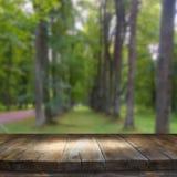 葡萄酒在梦想和抽象森林风景前面的木板桌 免版税库存图片