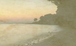 葡萄酒在老纸背景的假日卡片 唯一橄榄树和日落海视图  库存图片