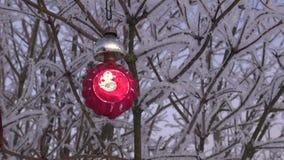 葡萄酒垂悬在树冰的圣诞节装饰品报道了灌木分支 影视素材