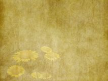 葡萄酒夏天美好的黄色开花在老黄色纸背景的假日卡片 免版税图库摄影