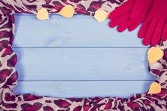 葡萄酒女子般地的手套和披肩照片、秋天的框架,衣物或冬天,文本的拷贝空间 免版税库存照片