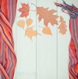 葡萄酒女子般地的披肩和秋季叶子照片、秋天的框架,衣物或冬天 图库摄影