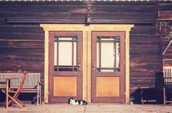 葡萄酒定了调子一只猫的照片在木房子前面的 免版税图库摄影
