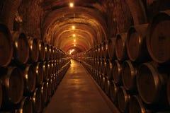 葡萄酒库在西班牙 图库摄影
