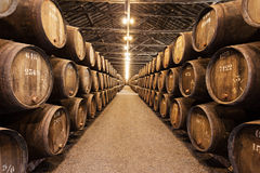 葡萄酒库,波尔图 免版税库存照片