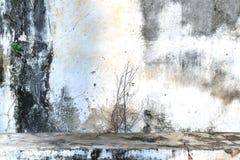 葡萄酒或脏的肮脏的白水泥墙壁背景,纹理 免版税库存图片