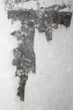 葡萄酒或自然水泥或石老纹理脏的白色背景  库存照片