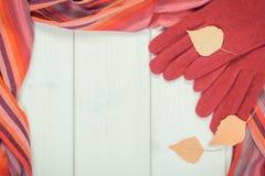 葡萄酒手套和披肩照片、框架妇女的,衣物秋天的或冬天概念 图库摄影