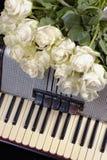 葡萄酒手风琴和白玫瑰花束  怀乡音乐的概念 库存图片