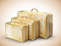 葡萄酒旅行袋子 免版税图库摄影