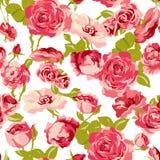 葡萄酒无缝的玫瑰背景 免版税库存照片