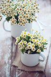 葡萄酒有春黄菊的搪瓷杯子 免版税库存图片