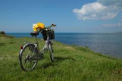 葡萄酒有花的妇女的自行车在晴朗的sprin的海边 库存图片