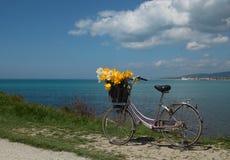 葡萄酒有花的妇女的自行车在晴朗的sprin的海边 免版税库存照片