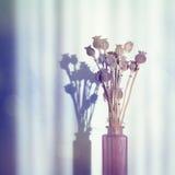 葡萄酒有静物画和阴影的花束花瓶 免版税库存照片