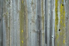 葡萄酒木地板背景纹理 图库摄影