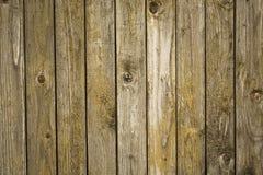 葡萄酒木头 库存图片