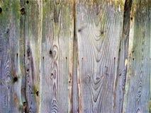 葡萄酒木板条背景纹理 老自然木篱芭 库存图片