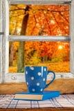 葡萄酒木窗口俯视秋天树 库存照片