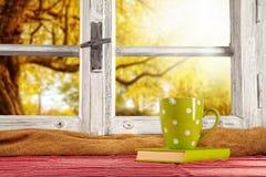 葡萄酒木窗口俯视秋天树 库存图片