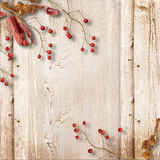 葡萄酒木背景用秋天花揪和叶子 免版税库存照片