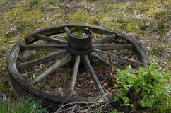 葡萄酒木轮子 库存图片