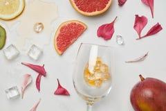 葡萄酒杯、异乎寻常的果子、冰块和花瓣的安排顶视图白色表面上 库存图片