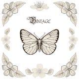 画葡萄酒板刻样式的蝴蝶和花 免版税库存图片