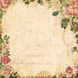 葡萄酒样式植物的花卉构成的背景 免版税图库摄影