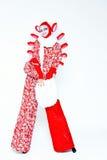 葡萄酒样式的女性小丑 库存图片