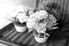 葡萄酒样式花束花 图库摄影