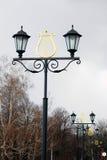 葡萄酒样式里拉装饰的街灯 免版税库存图片