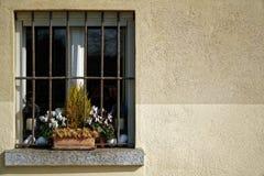 葡萄酒格栅窗口和干燥花在花盆在窗口基石,晴天,意大利样式 免版税库存照片
